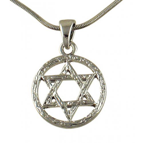 Rhodium Pendant Necklace, Gleaming Star of David in Circle - Silver