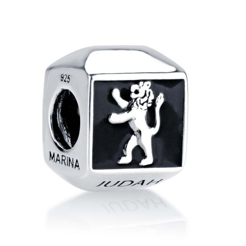 Sterling Silver Square Lion of Judah Charm